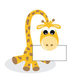 A sweet little giraffe with a placard Royalty Free Stock Images
