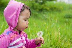 Sweet little girl blowing dandelion Royalty Free Stock Photos