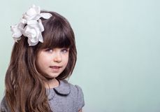 Sweet little girl with curly hair and white flowers in haircut. Cute stylish child on blue background royalty free stock images