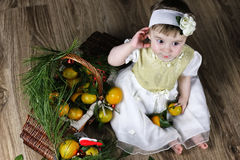 Sweet little girl in dress with christmas basket Royalty Free Stock Photos
