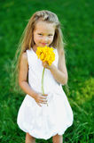 Sweet little girl with smell flower in a park Royalty Free Stock Photography