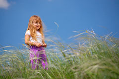 Little girl walks on the field Royalty Free Stock Image
