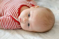 Sweet little newborn baby Royalty Free Stock Images