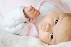 Sweet little newborn baby in a bed Royalty Free Stock Photos