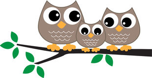 A sweet little owl family Stock Photos