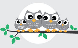 A sweet little owl family Royalty Free Stock Image