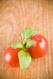 Sweet little red tomatos and green basil Stock Images