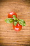 Sweet little red tomatos and green basil Royalty Free Stock Images