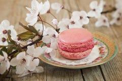 Sweet Macarons stock image