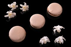 Sweet macarons or macaroons. Decorated with blooming flowers on a black background stock photos