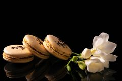 Sweet macarons or macaroons. Decorated with blooming flowers on a black background royalty free stock photos