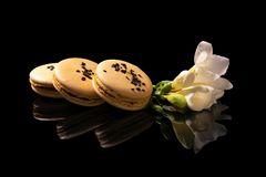 Sweet macarons or macaroons. Decorated with blooming flowers on a black background royalty free stock photography