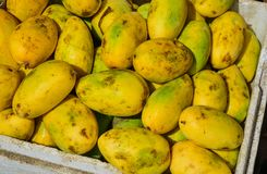 Sweet mango fruits at the rural market. In Coron Island, Philippines Stock Photos
