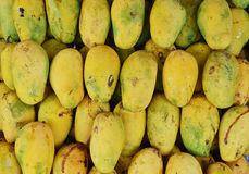 Sweet mangoes Royalty Free Stock Photography