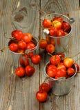 Sweet Maraschino Cherries Stock Image