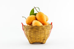 Sweet Marian plum fruit. Royalty Free Stock Photos