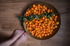 Sweet marian plum peeled in stainless bowl with women`s feet Stock Photos