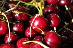Sweet maroon cherries Stock Photos