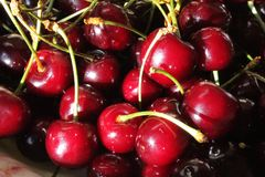 Sweet maroon cherries Stock Images