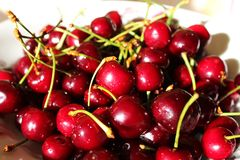 Sweet maroon cherries on the plate Royalty Free Stock Photo