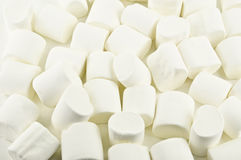 Marshmallow Stock Photography
