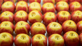 Sweet marzipan in the form of apples Stock Photo