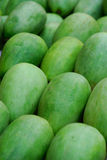Sweet melon Stock Photo