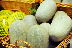 Sweet melons Royalty Free Stock Photo