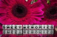 Sweet memories message with flowers Royalty Free Stock Image