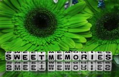 Sweet memories message with green flowers Stock Image