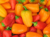 Sweet Mini Peppers. Closeup of several colorful sweet mini peppers royalty free stock photo