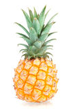 Sweet Mini Pineapple Stock Images