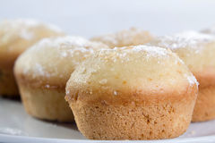 Sweet muffin Stock Photos