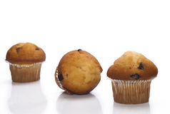 Chocolate muffin isolated Royalty Free Stock Images