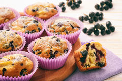 Sweet muffins with chokeberries (aronia) on white wooden table. Sweet muffins with chokeberries (aronia) on white wooden table stock photo