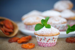 Sweet muffins with dried apricots Stock Images