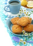 Sweet muffins on plate, cup of tea and chamomile Stock Photo