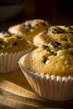 Sweet muffins on a wooden board in daylight Stock Photos