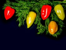 Sweet multicolor pepper with dill in the form of a branch of the New Year tree. Christmas dill branch decorated with sweet peppers. Sweet multicolor pepper with royalty free stock photography