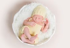 Sweet newborn baby in hat and panties sleeping on the shell. Top view Royalty Free Stock Photography
