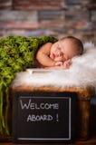 Sweet newborn baby sleeping on softy blanket Stock Photography