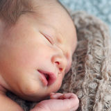 Sweet newborn Royalty Free Stock Photos