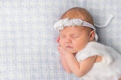 Sweet newborn girl sleeping on her hands Royalty Free Stock Image