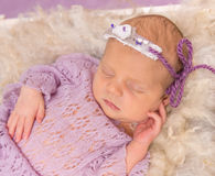 Sweet newborn sleeping in square cot on violet background Royalty Free Stock Images