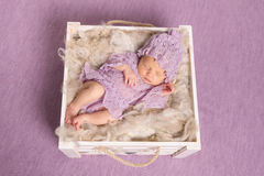 Sweet newborn sleeping in square cot on violet background Stock Photography