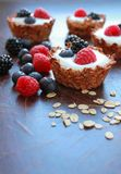 Sweet oat cookies Stock Images