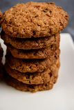 Sweet oatmeal cookies  in plate Royalty Free Stock Images