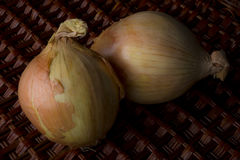 Sweet onions Stock Images