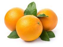 Free Sweet Orange Fruit Royalty Free Stock Photos - 87206058