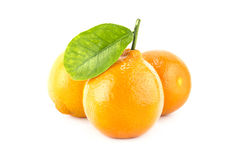 Sweet Orange Fruit with leaves. Stock Images